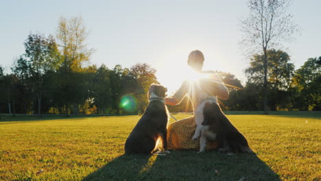The-Owner-Of-Two-Australian-Shepherd-Dogs-Playing-With-Them-In-The-Park-In-The-Sun