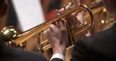 Musician-Playing-Trumpet-At-Concert-7