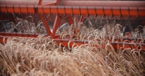 Combine-Harvester-Working-In-Agriculture-Field-4