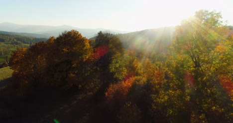 Aerial-View-Sunrise-Sunset-Over-Of-Forest-9
