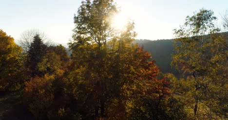 Aerial-View-Sunrise-Sunset-Over-Of-Forest-2