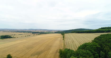 Aerial-Shoot-Of-Wheat-Fields