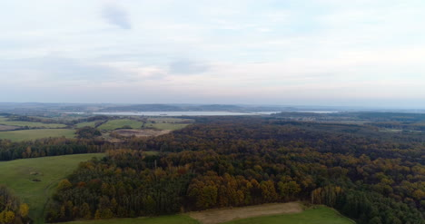 Flying-Over-Forest-Forest-From-Above