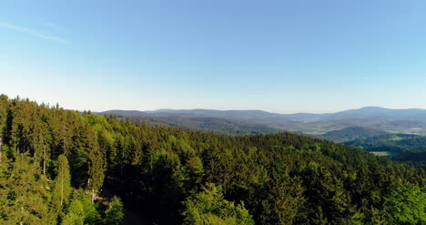 Aerial-View-Of-Forest-2