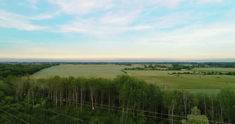 Aerial-View-Of-Forest-4