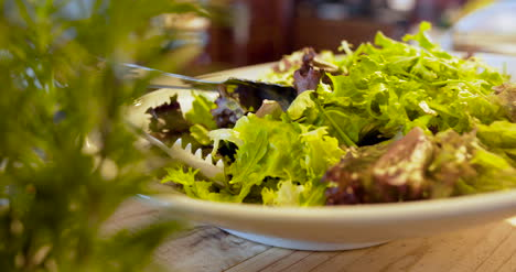 Italian-Food-Several-Fresh-Salads-And-Vegetables-On-Plate-1