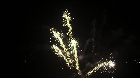 Fireworks-At-The-Beginning-Of-The-New-Year-In-Black-Night-5