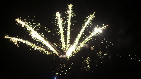 Fireworks-At-The-Beginning-Of-The-New-Year-In-Black-Night-6