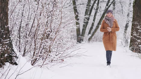 A-Young-Woman-Walks-In-A-Winter-Park-Steadicam-Shot