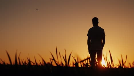 A-Young-Man-Stands-In-One-Field-And-Looks-At-The-Sunset