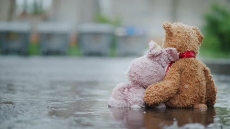 Two-Friends---A-Hare-And-A-Bear-Cub-Are-Sitting-On-The-Asphalt-In-The-Rain-Look-At-The-Trash-Cans-In