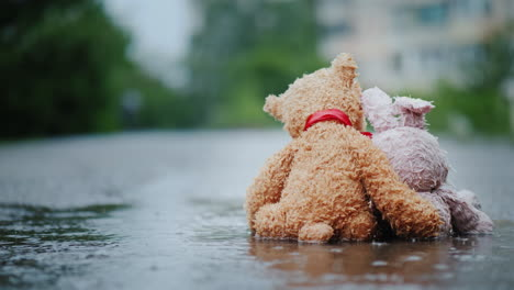 Faithful-Friends---A-Bunny-And-A-Bear-Cub-Sit-Side-By-Side-On-The-Road-Wet-Under-The-Pouring-Rain-Lo