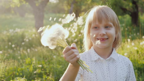Carefree-Girl-Plays-With-A-Bunch-Of-Dandelions-Having-Fun-In-The-Open-Air-Slow-Motion-Video