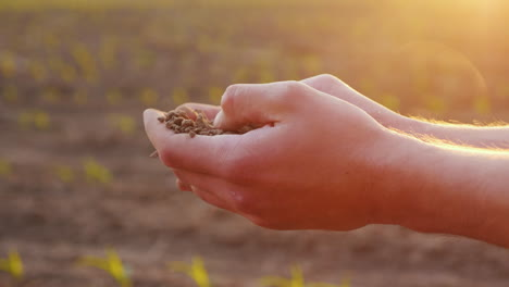 Hands-Of-The-Farmer-s-Man-Holding-The-Ground-Touching-Her-Fingers-Against-The-Background-Of-A-Field-