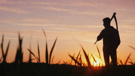 A-Young-Farmer-With-A-Scythe-Standing-In-A-Field-At-Sunset-Silhouette-Rear-View-4K-Video