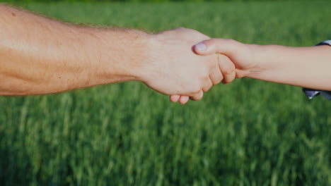 A-Man-Farmer-Shakes-Hands-With-A-Woman-Against-The-Background-Of-A-Green-Wheat-Field-4K-Video
