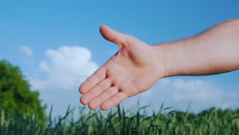 Two-Male-Farmers-Shake-Hands-Against-The-Background-Of-A-Green-Field-And-A-Blue-Sky-Deal-In-Agribusi