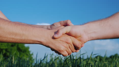 Two-Farmers-Shake-Hands-Against-The-Background-Of-A-Green-Wheat-Field-Deal-In-Agribusiness-Concept-4