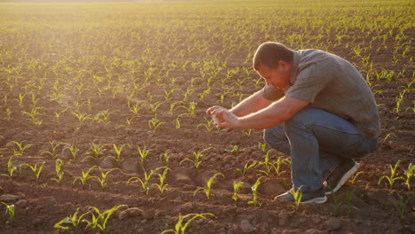 The-Farmer-Pictures-Young-Shoots-On-The-Field-Uses-A-Smartphone-Technology-In-Agribusiness-Hd-Video