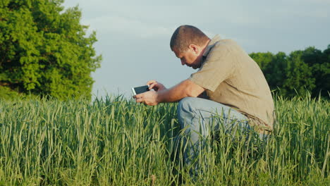 A-Middle-Aged-Agronomist-Photographs-Green-Wheat-Sprouts-4K-Video