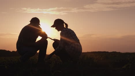 Silhouettes-Of-Two-Farmers---Men-And-Women-Work-In-The-Field-At-Sunset-Study-Plant-Shoots-Use-A-Tabl