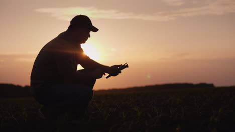 A-Female-Farmer-Is-Working-In-The-Field-At-Sunset-Studying-Plant-Shoots-Photographing-Them-Using-A-T