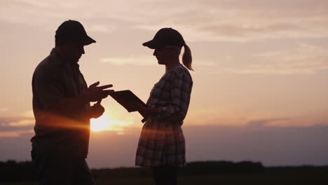 Two-Farmers-Work-In-The-Field-In-The-Evening-At-Sunset-A-Man-And-A-Woman-Discuss-Something-Use-A-Tab