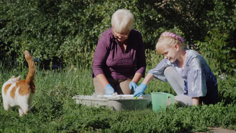 Grandmother-And-Granddaughter-Put-Flowers-Together-In-The-Yard-Active-Senior-People-Concept