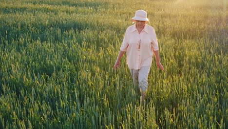 An-Elderly-Female-Farmer-Is-Walking-Along-A-Field-Of-Green-Wheat-Hands-Touching-The-Spikelets