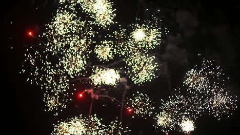 Fireworks-At-The-Beginning-Of-The-New-Year-In-Black-Night-9