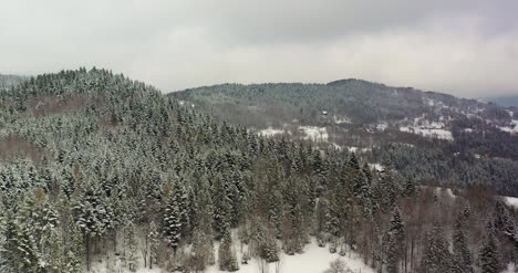 Forest-Covered-With-Snow-Aerial-View-Aerial-View-Of-Village-In-Mountains-11