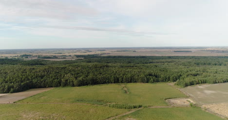 Aerial-View-Of-Agricultural-Fields-And-Forest