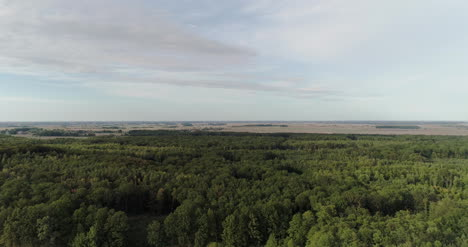 Aerial-View-Of-Agricultural-Fields-And-Forest-2