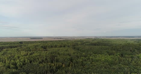 Aerial-View-Of-Agricultural-Fields-And-Forest-3