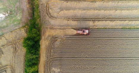 Combine-Harvester-Harvesting-Agricultural-Wheat-Field-3