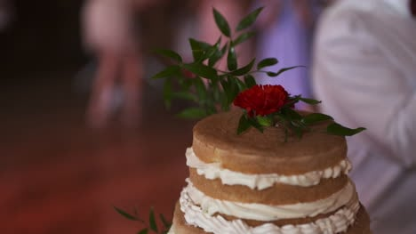 Beautiful-Shot-Of-Wedding-Cake-During-Wedding-Reception