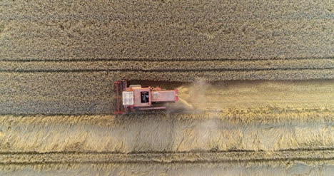 Combine-Harvester-Harvesting-Agricultural-Wheat-Field-7