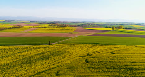 Agriculture-Aerial-View-Of-Summer-Countryside-
