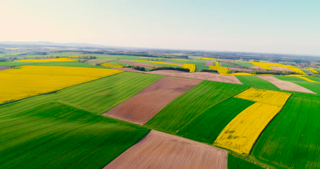 Fields-With-Various-Types-Of-Agriculture-4K-10