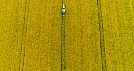 Farming-Agricultural-Tractor-Spraying-Oilseed-Rape-Field-