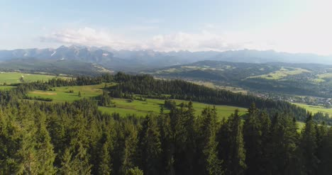 Flying-Over-The-Beautiful-Forest-Trees-Landscape-Panorama-10