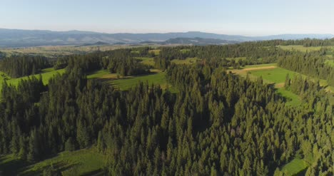 Flying-Over-The-Beautiful-Forest-Trees-Landscape-Panorama-16