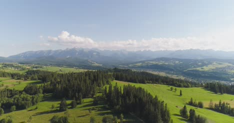 Flying-Over-The-Beautiful-Forest-Trees-Landscape-Panorama-25