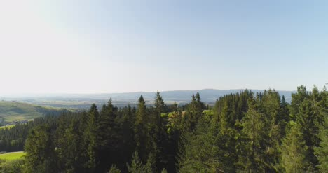 Flying-Over-The-Beautiful-Forest-Trees-Landscape-Panorama-41