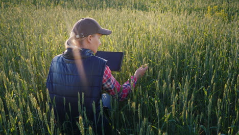Young-Woman-Farmer-Working-In-A-Field-Of-Green-Wheat-Studying-Sprouts-Using-A-Tablet