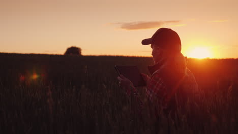 A-Female-Farmer-Is-Working-In-The-Field-At-Sunset-Enjoying-A-Tablet-Technologies-In-Agrobusiness-4K-