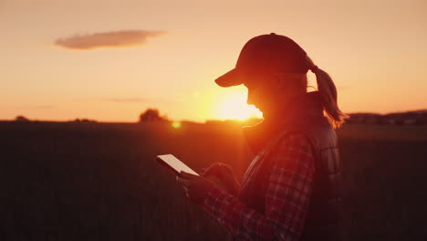 Young-Woman-Farmer-Working-With-Tablet-In-Field-At-Sunset-The-Owner-Of-A-Small-Business-Concept-4K-V