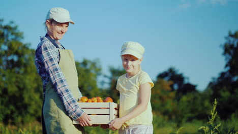 Woman-Farmer-With-Daughter-Holding-A-Box-Of-Tomatoes-From-Their-Field-4K-Video