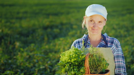 Woman-Farmer-With-Basket-Of-Greens-And-Spices-Standing-On-The-Field