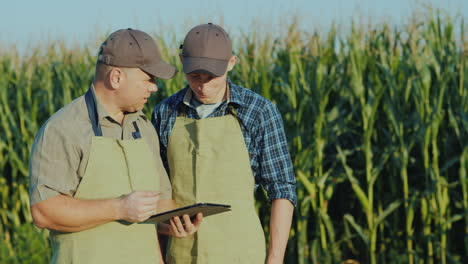 Farmer-Father-And-Son-Are-Standing-In-The-Background-Of-A-Cornfield-Communicate-Use-A-Tablet-Family-
